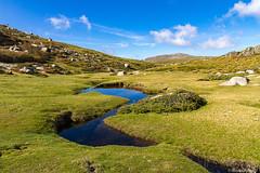 Le plateau du Cuscione en automne-009