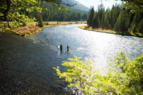 madison-river-montana-34