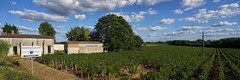 Chateau Galand, Fronsac - Photo of Galgon