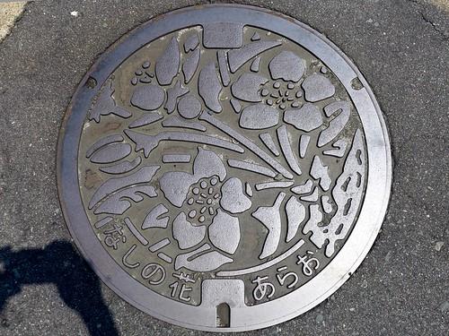 Arao Kumamoto, manhole cover 2 (熊本県荒尾市のマンホール2)