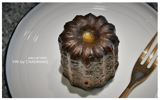 VWIbychadWang王策-11