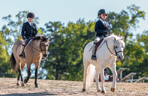 nx500 samsungnx500 equestrian samsungnx85mmf14 choiceshot2018