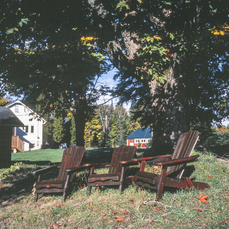 Three Brown Muskoka Chairs