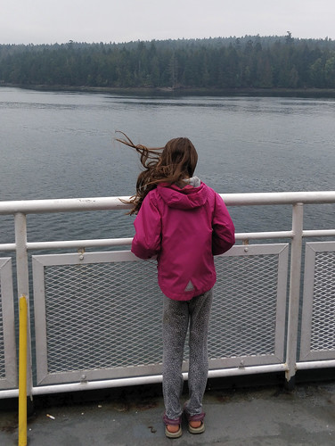 Freezing on the ferry