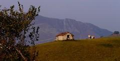 Sorhueta (Pyrénées Atlantiques, Fr)