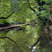 Canal at Romiley, Nr. Stockport.