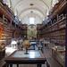 Palafoxian Library por sacipere