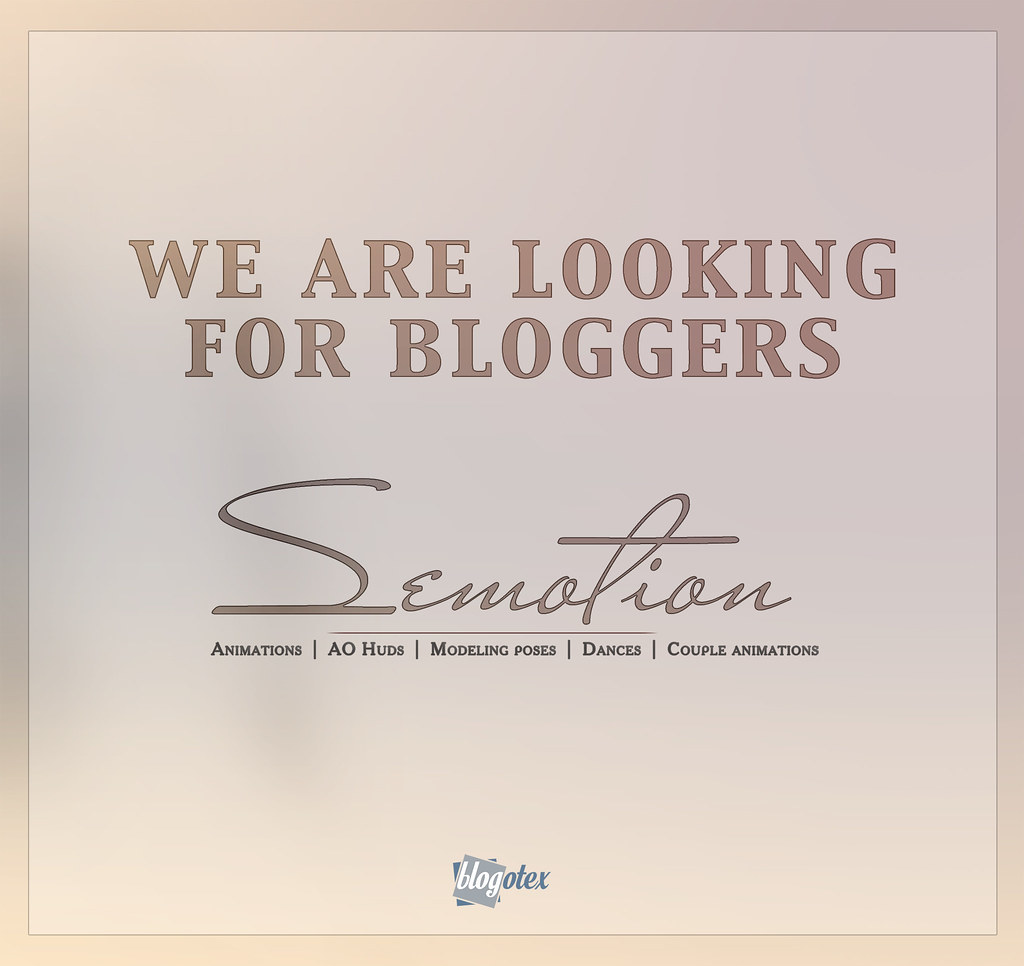 We are looking for bloggers..