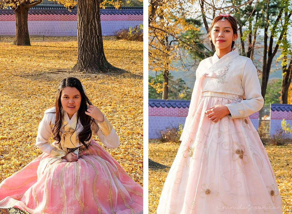 ginko_gyeongbokgung_palace