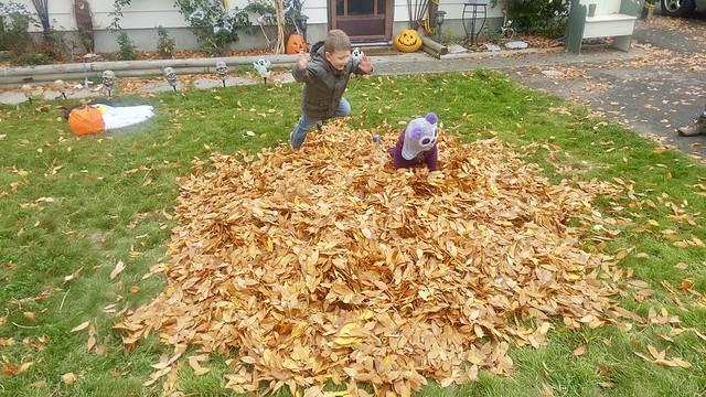 Leaf Leap
