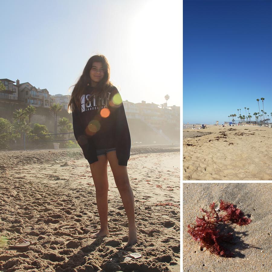 beach-morning-1