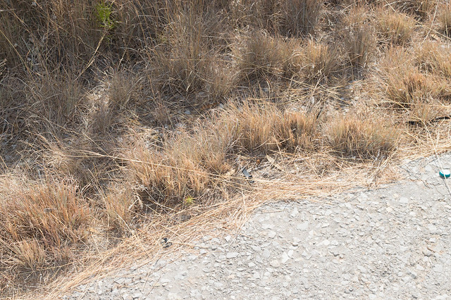 Παρεμβάσεις στον δρόμο Ψίνθος - Καλυθιές