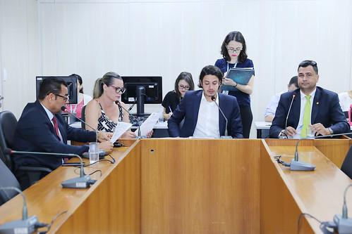 33ª Reunião Ordinária - Comissão de Legislação e Justiça