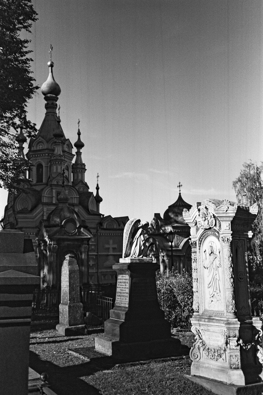 The Necropolis of the Donskoy Monastery