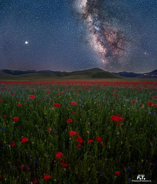 Via Lattea Milky Way, Pentax K-5, smc PENTAX-DA* 16-50mm F2.8 ED AL [IF] SDM (SDM unused)