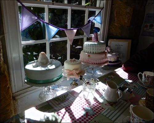 Birthday Cakes Window