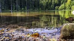 2018 09 29 Lac de la Maix-752395 - Photo of Grandfontaine