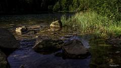 2018 09 29 Lac de la Maix-752398 - Photo of Grandfontaine