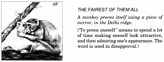 NCERT Solutions for Class 9 English Beehive Chapter 5 The Snake and the Mirror Q.2
