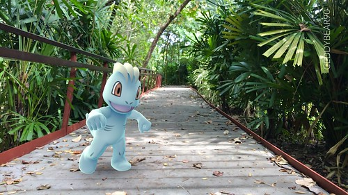 066 Machop (position=left)
