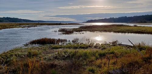 wetland saltmarsh galaxys9 tide hoodcanal kitsappeninsula olympicpeninsula sunset