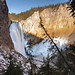 Lower Falls viewed from Uncle Tom's Trail by YellowstoneNPS