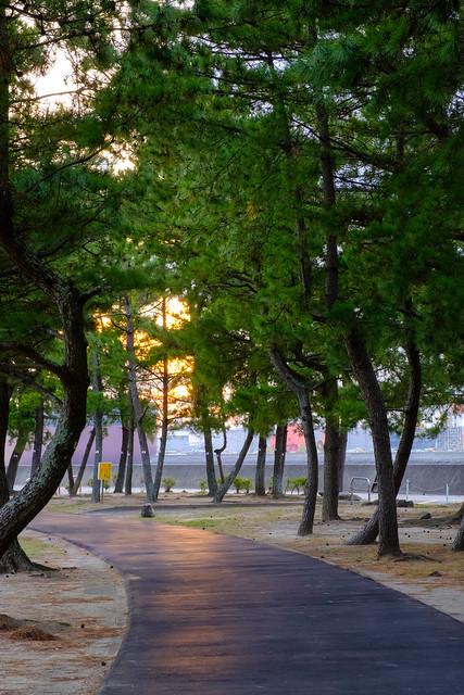 長洲町B&G海洋センター