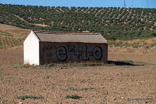 Matemáticas y Agricultura  en los campos de Andalucía (xD)