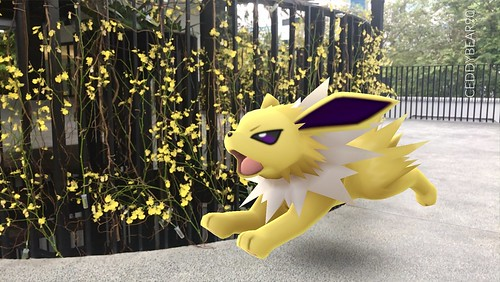 135 Jolteon (position=right)
