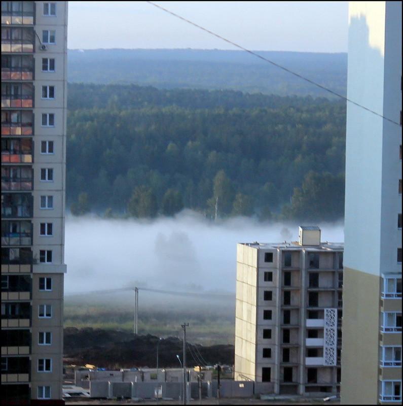 Челябинск 3773 Туман.