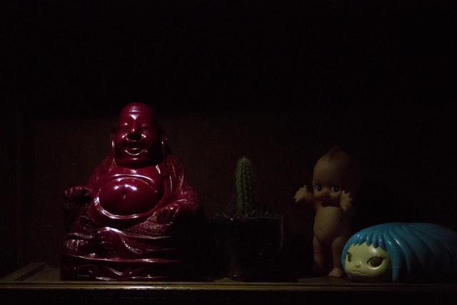 Budha, kewpie, cactus y, Canon EOS REBEL T3, Canon EF 28-80mm f/3.5-5.6
