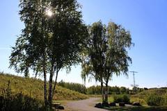 Gleispark Frintrop