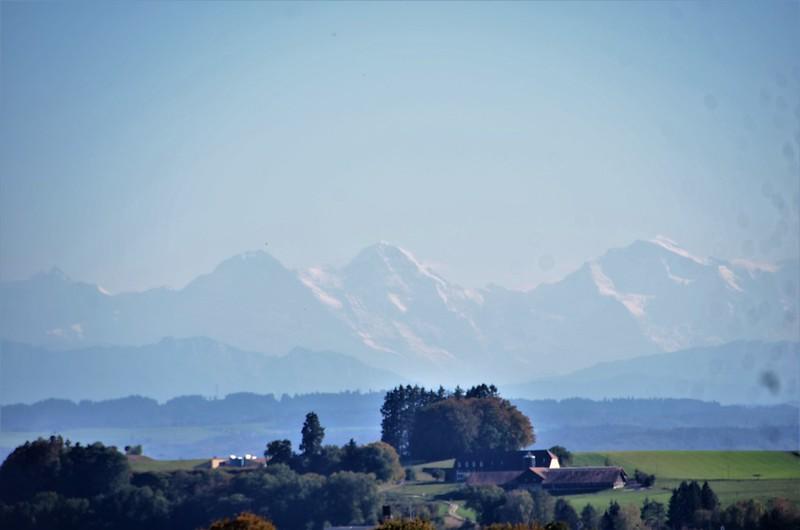 Alps 14.10 (1)