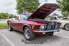 Mustangs Of Memphis Car Show