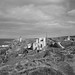 L2018_4320 - Levant Mine - Cornwall