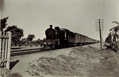 Egypt Railways - Egyptian State Railways steam locomotive Nr. 594 and freight train in WWII