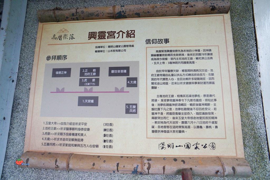 【高厝聚落巡禮】陽明山夏季農事初體驗