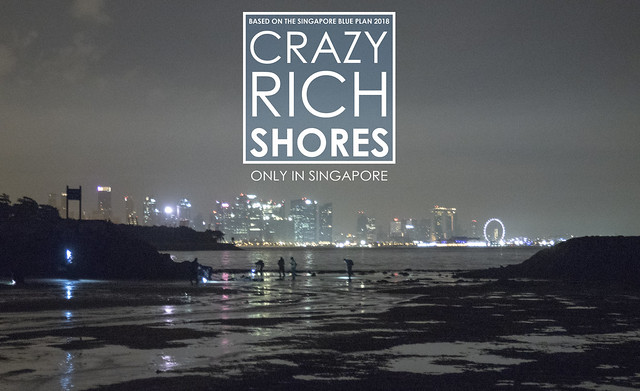 Crazy Rich Shores: Kusu Island