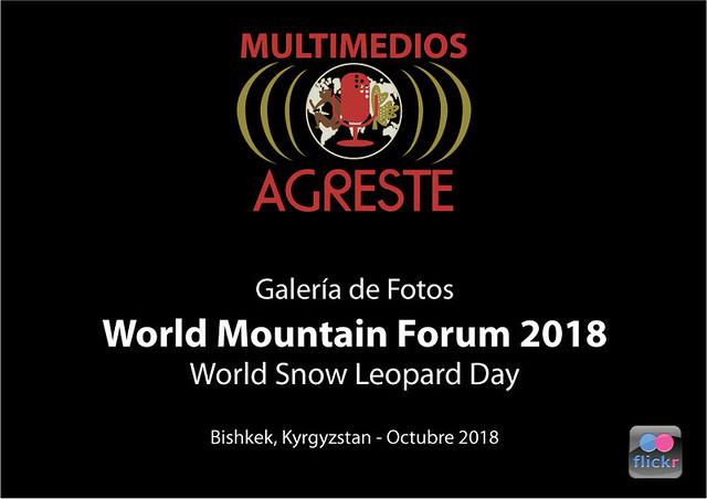 WMF 2018