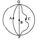 NCERT Solutions for Class 11 Physics Chapter 4.6