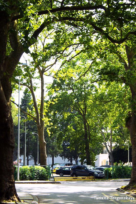 Парковка возле тиватского комплекса Буча