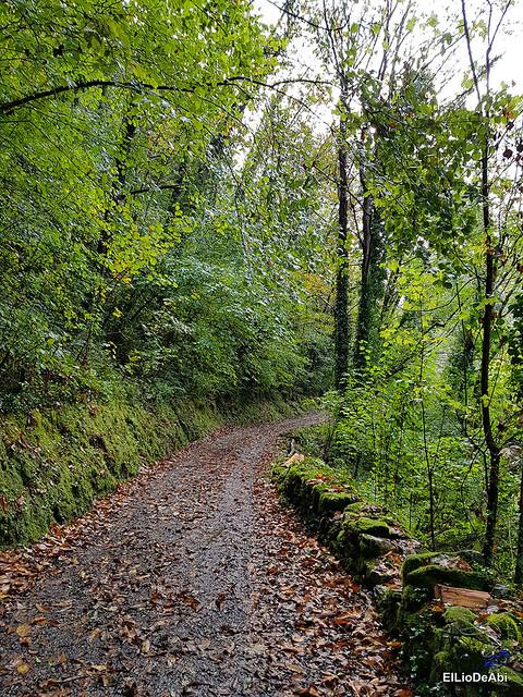 Fin de semana en el Concejo de Belmonte de Miranda, Asturias 17