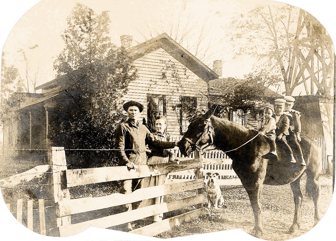 Lawrence Kate 3 boys and horse abt 1898