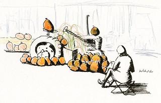 10-12-18 pumpkin display at Swansons Nursery, Seattle