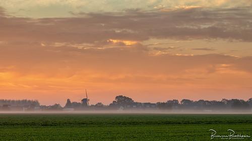 d'Oranjeboom at Sunrise