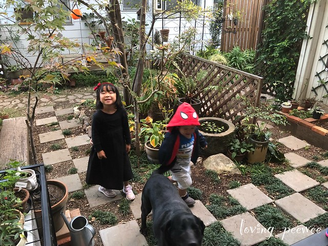 Halloween-38
