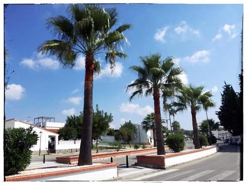 Castellar de la Frontera, Cadiz, Spain