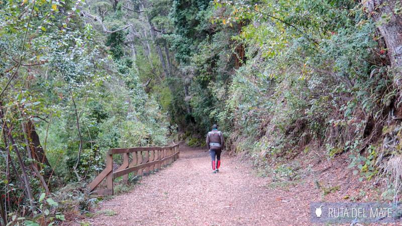 Que ver en Villa La Angostura IMG_5958