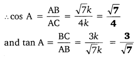 NCERT Solutions for Class 10 Maths Chapter 8 Introduction to Trigonometry 4