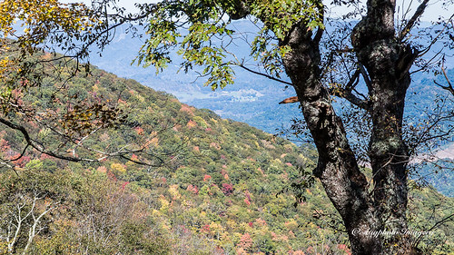 augphotoimagery blueridgeparkway autumn fall landscape mountains nature outdoors scenic trees waynesville northcarolina unitedstates